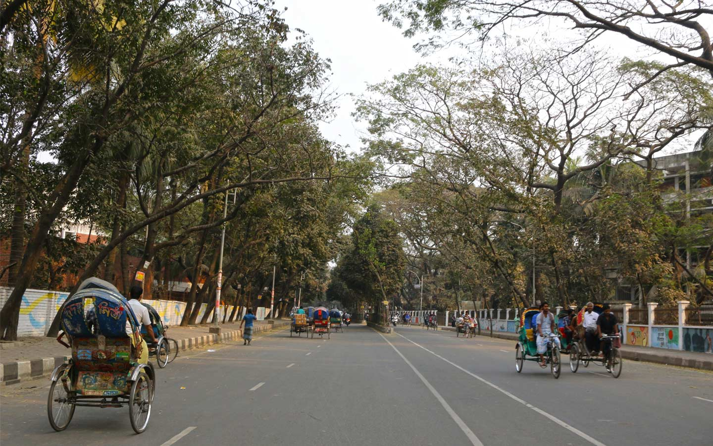 Rickshaw is one of the convenient mode of transportation