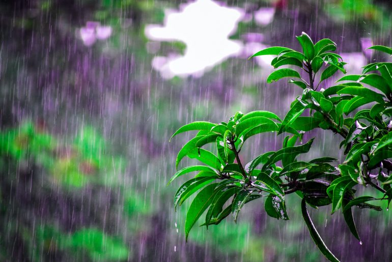 Ways To Keeping The House Safe In The Rainy Season - Bproperty