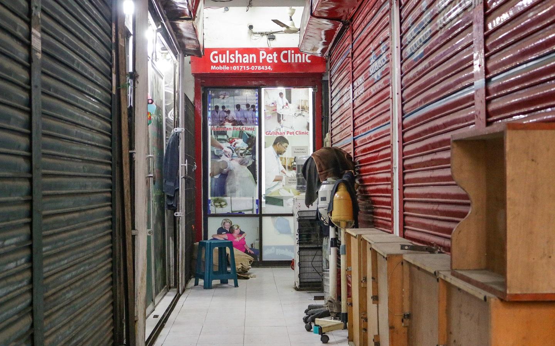 Gulshan Pet Clinic