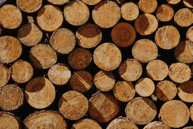 Availability of Different Types of Woods In Bangladesh - Bproperty