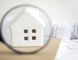 A Thorough Guide on the Basics of a Home Inspection – Bproperty