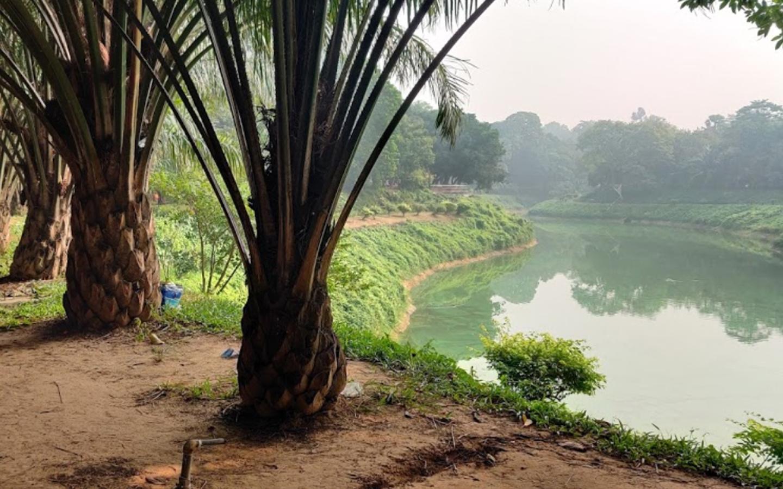 Gulshan park