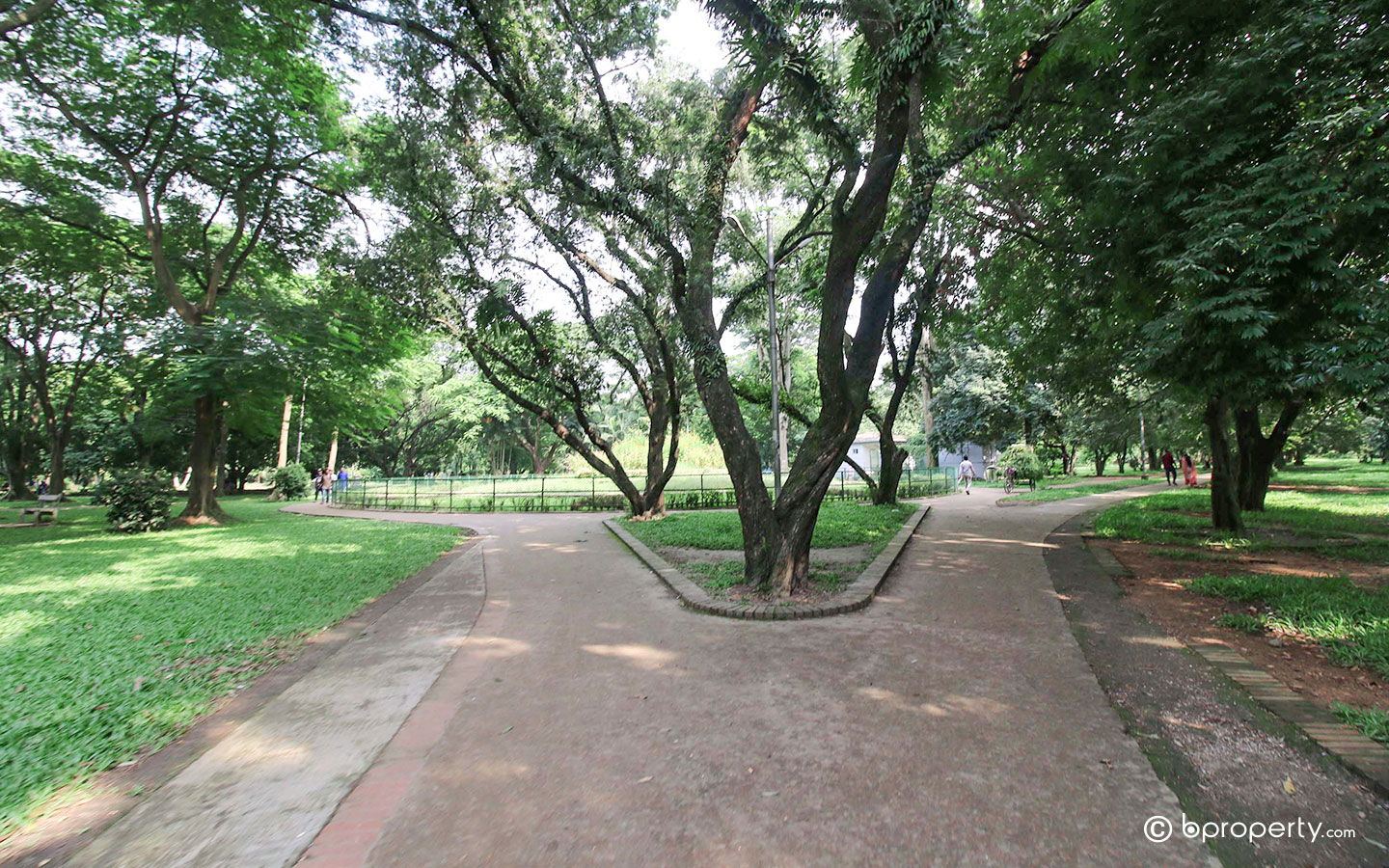 Ramna Park is one of the most famous parks in Dhaka