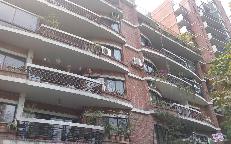Spacious apartment in Dhanmondi