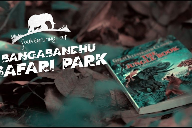 A Marvellous Day at the Bangabandhu Safari Park - Bproperty