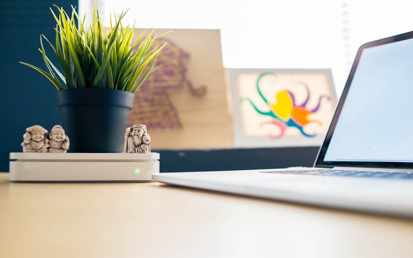 Plants can be a great workspace decoration item to increase productivity