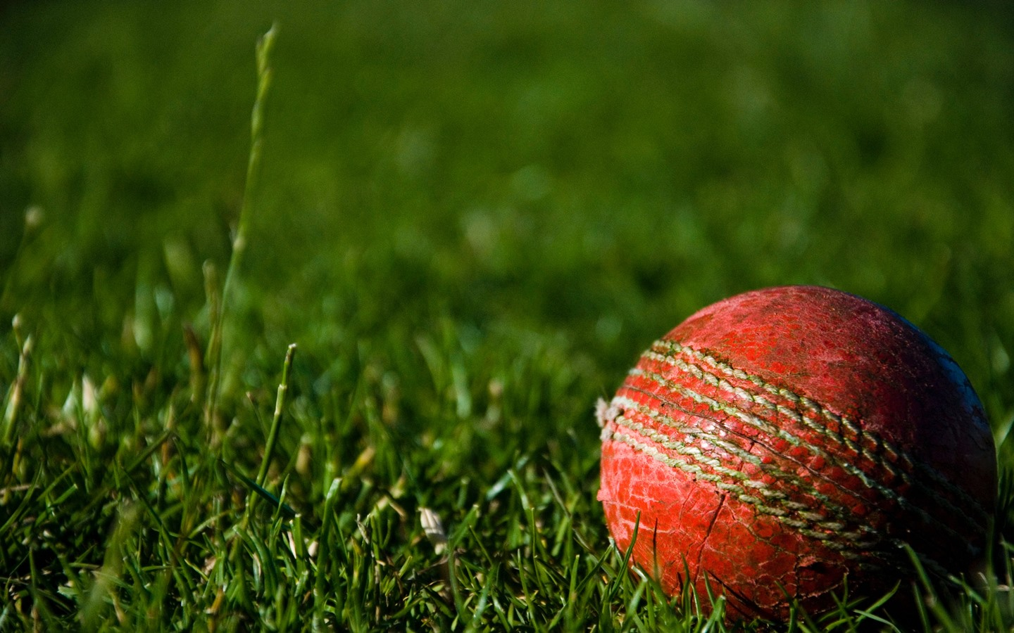 Upcoming events in dhaka for cricket lovers