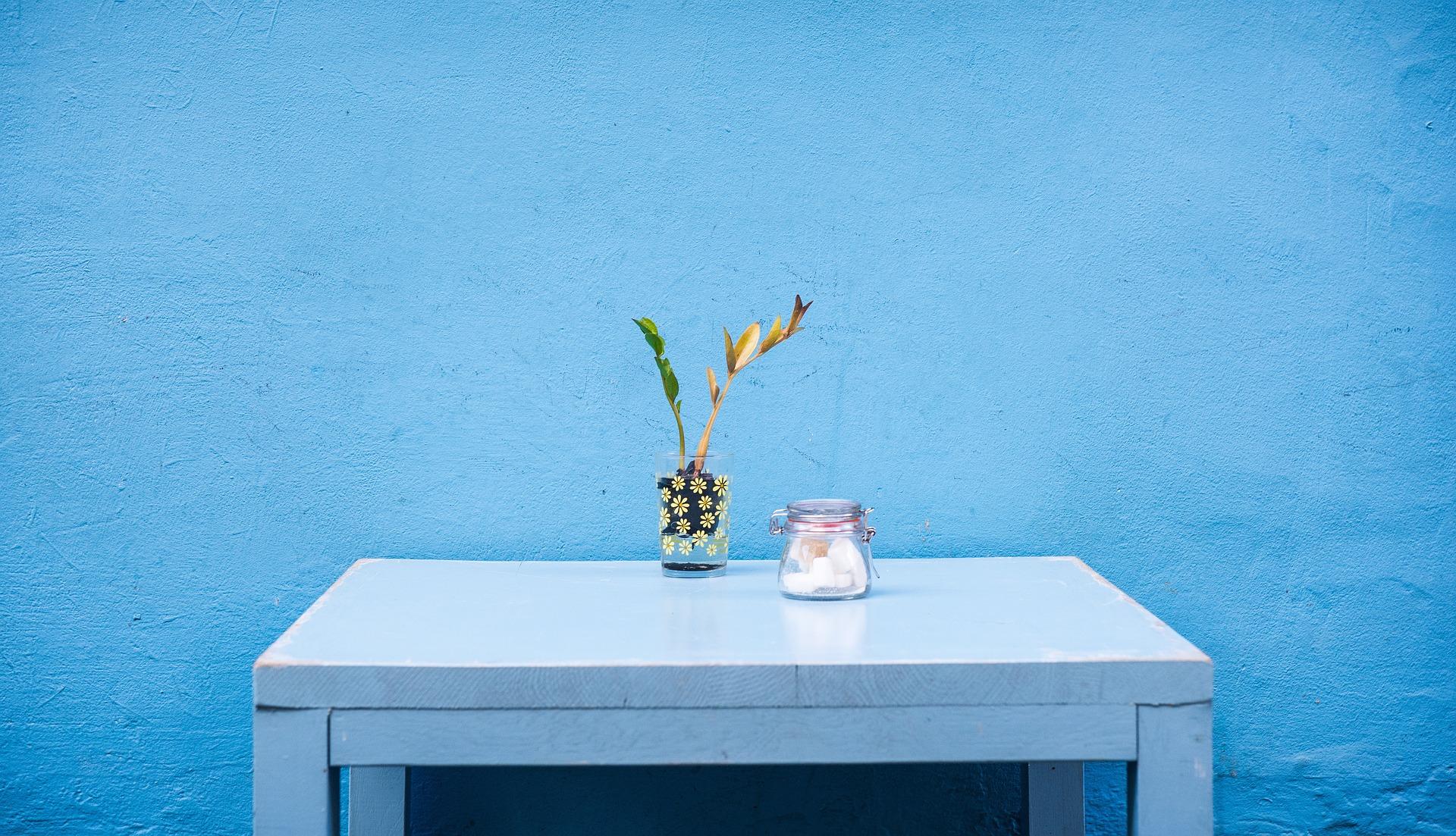 blue wall behind desk