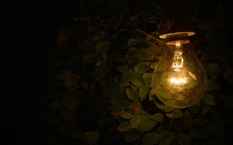 lit bulb in a dark room