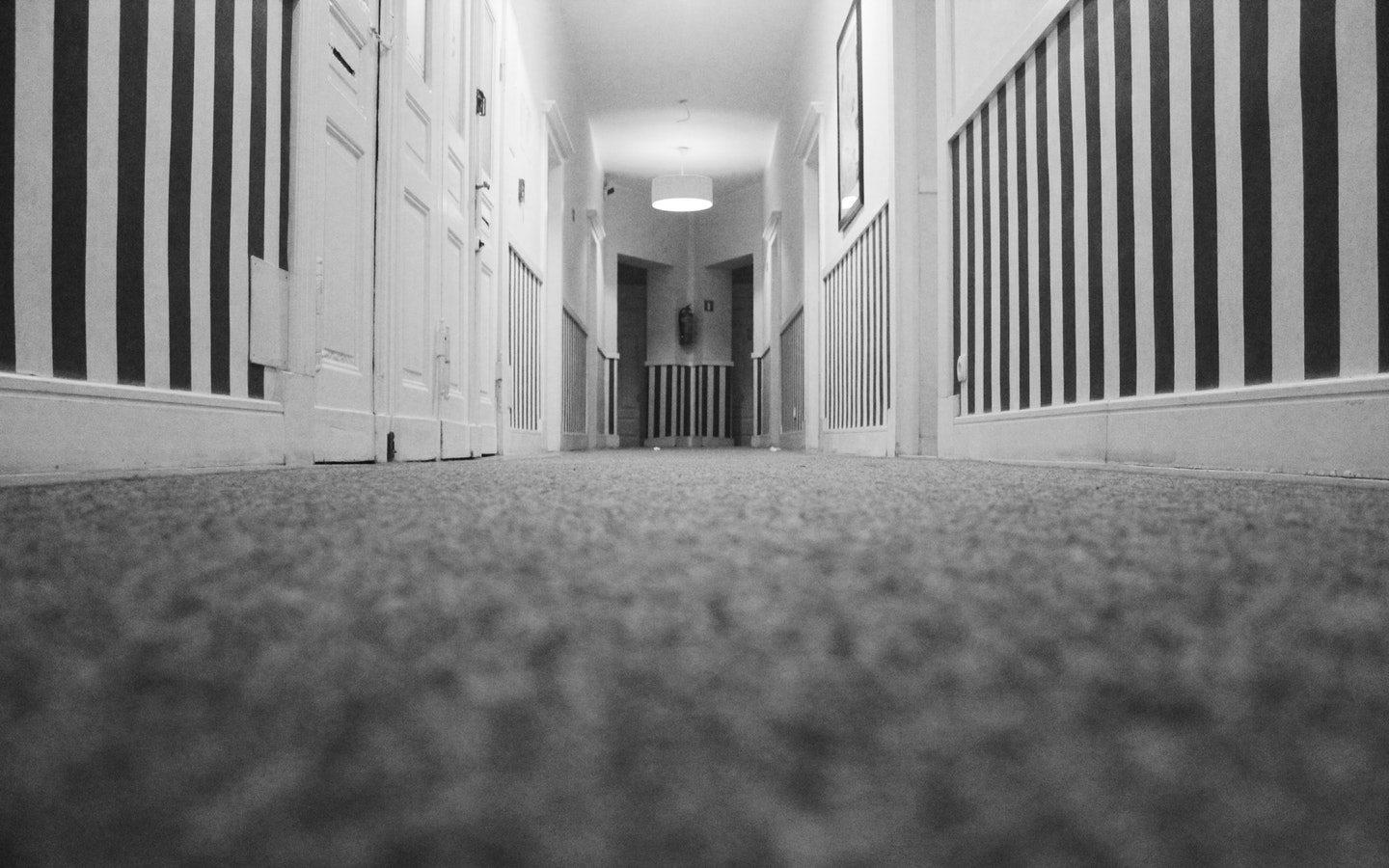 low angle carpet shot