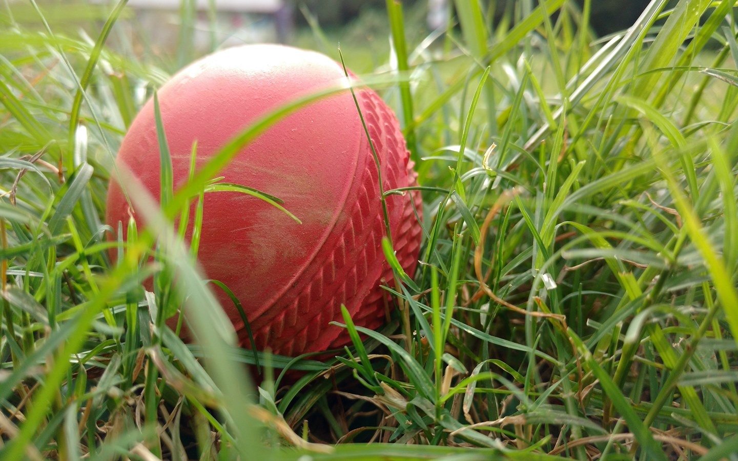 BPL is one of the popular events in Dhaka for cricket lovers