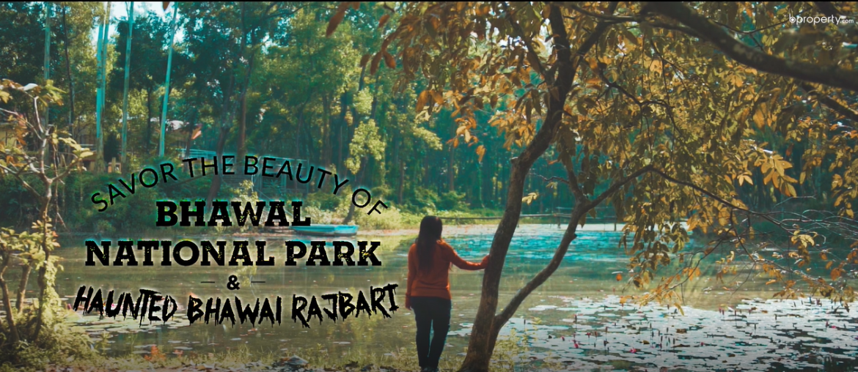 """চলুন, হারিয়ে যাই - গজারির গড় নামে বিখ্যাত """"ভাওয়াল জাতীয় উদ্যান এ"""""""