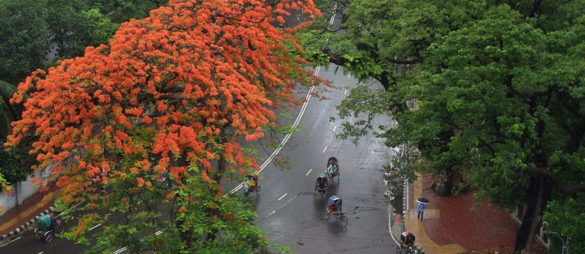 Top 5 Historical Roads/Squares Of Dhaka - Bproperty