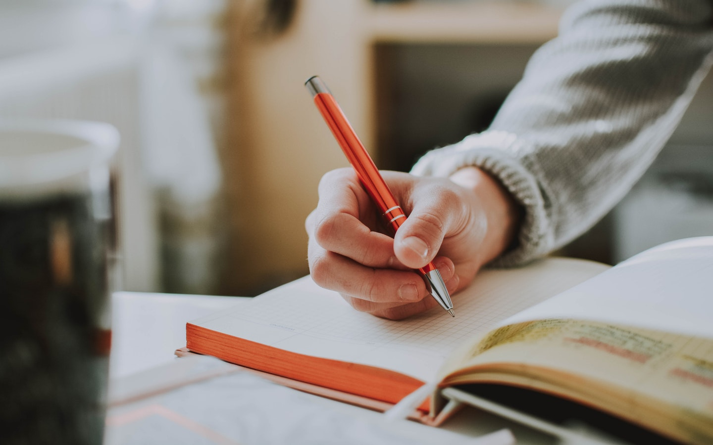 Pen, diary and hand