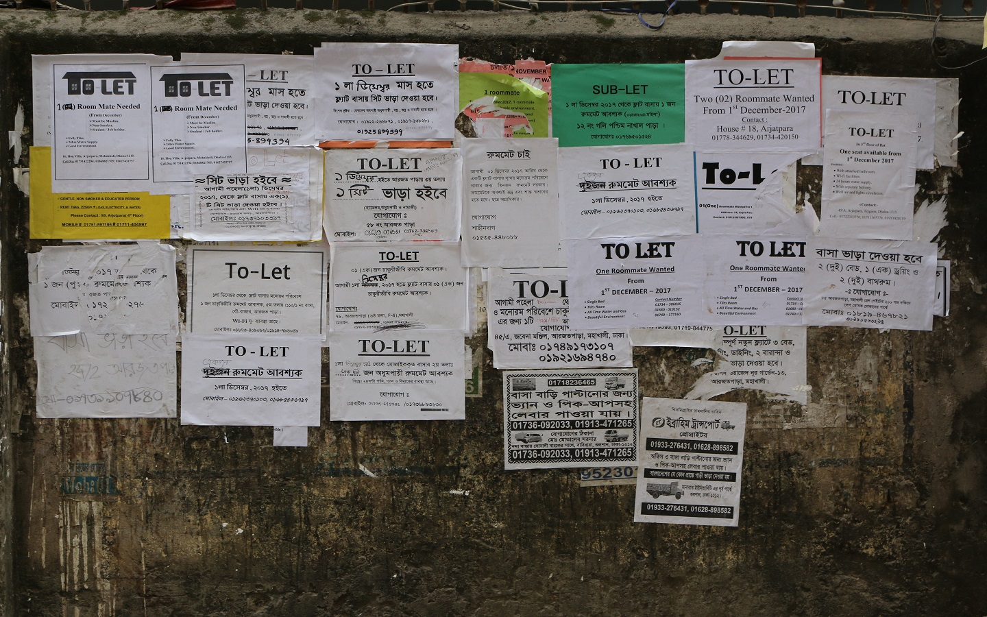 To-let sign on a wall
