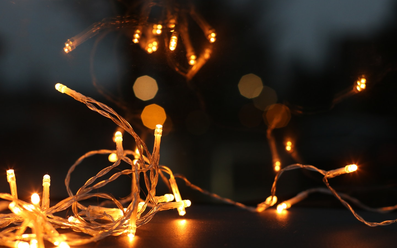 Fairy lights focused photography