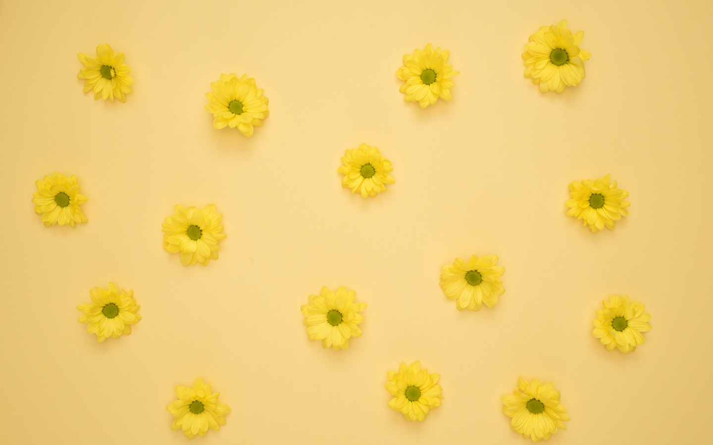 Flowers made from papers
